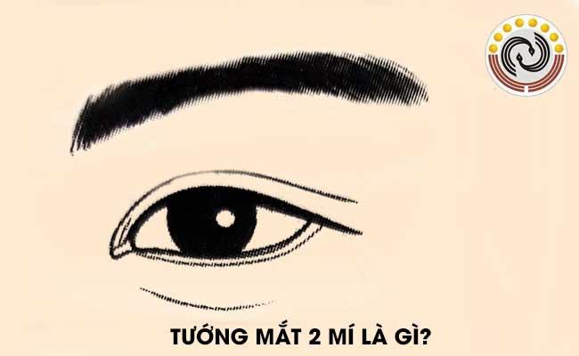 Tướng mắt hai mí là gì & Người sở hữu mắt 2 mí có tính cách như thế nào?