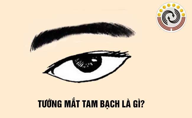 Tướng mắt tam bạch là gì & Người sở hữu mắt tam bạch có #Vận #Mệnh ra sao?