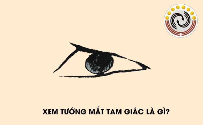Xem tướng mắt tam giác là gì, tướng mắt tam giác có ý nghĩa gì?