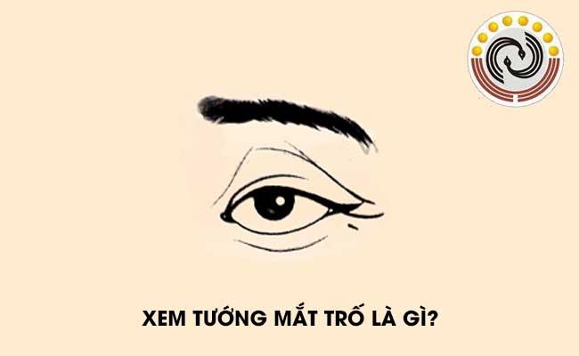 Tướng mắt trố là gì? Tướng mắt trố có nghĩa là gì?