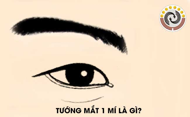 Trong nhân tướng học, người có mắt 1 mí có gì #đặc #biệt?