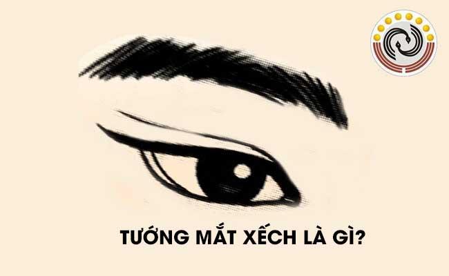 Tướng mắt xếch là gì & Người sở hữu mắt xếch có #Vận #Mệnh như thế nào?