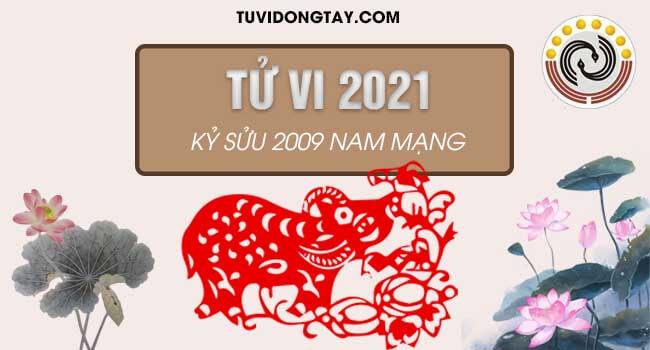 Xem tử vi tuổi Kỷ Sửu năm 2021 nam mạng & Cách hóa giải vận hạn nếu có?