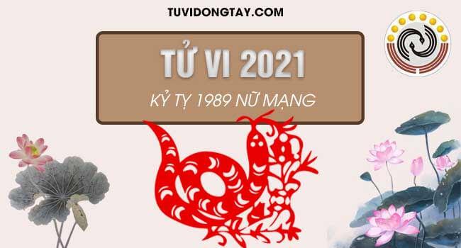 Bình giải tử vi tuổi Kỷ Tỵ năm 2021 nữ mạng & Cách hóa giải nếu có?