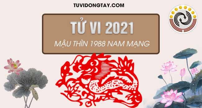 Giải trình tử vi tuổi Mậu Thìn nam mạng năm 2021 chi tiết 12 tháng, xem diễn biến vận trình tuổi Mậu Thìn