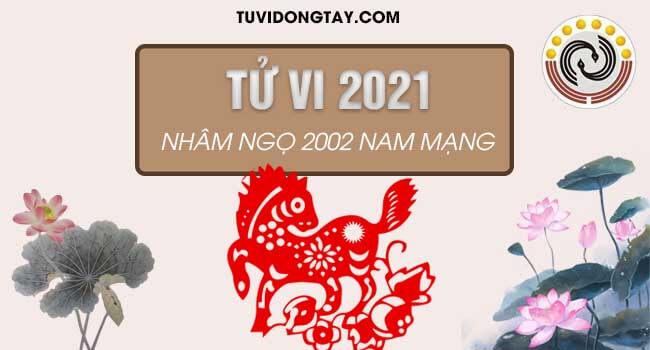 Luận giải tử vi tuổi Nhâm Ngọ năm 2021 nam mạng & Sự nghiệp học hành nam Nhâm Ngọ sẽ đi đến đâu?