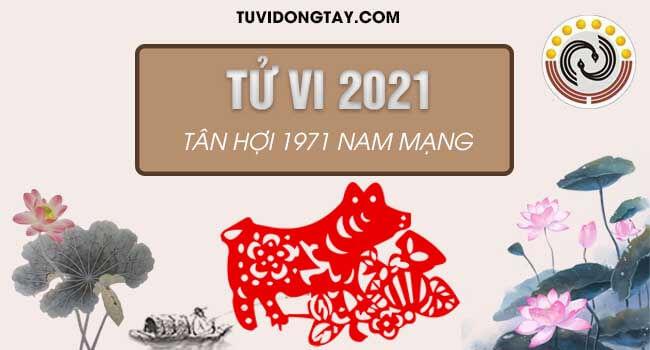 Bình giải tử vi tuổi Tân Hợi năm 2021 nam mạng giúp quý anh 1971 nắm được vận trình của bản thân năm 2021 Tân Sửu